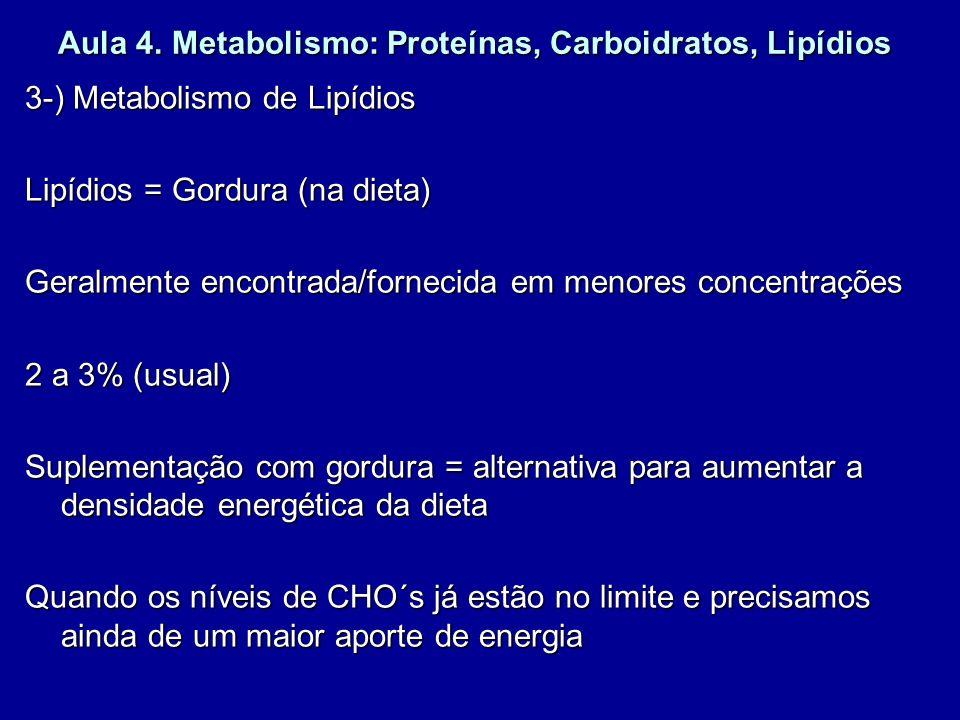 Aula 4. Metabolismo: Proteínas, Carboidratos, Lipídios 3-) Metabolismo de Lipídios Lipídios = Gordura (na dieta) Geralmente encontrada/fornecida em me