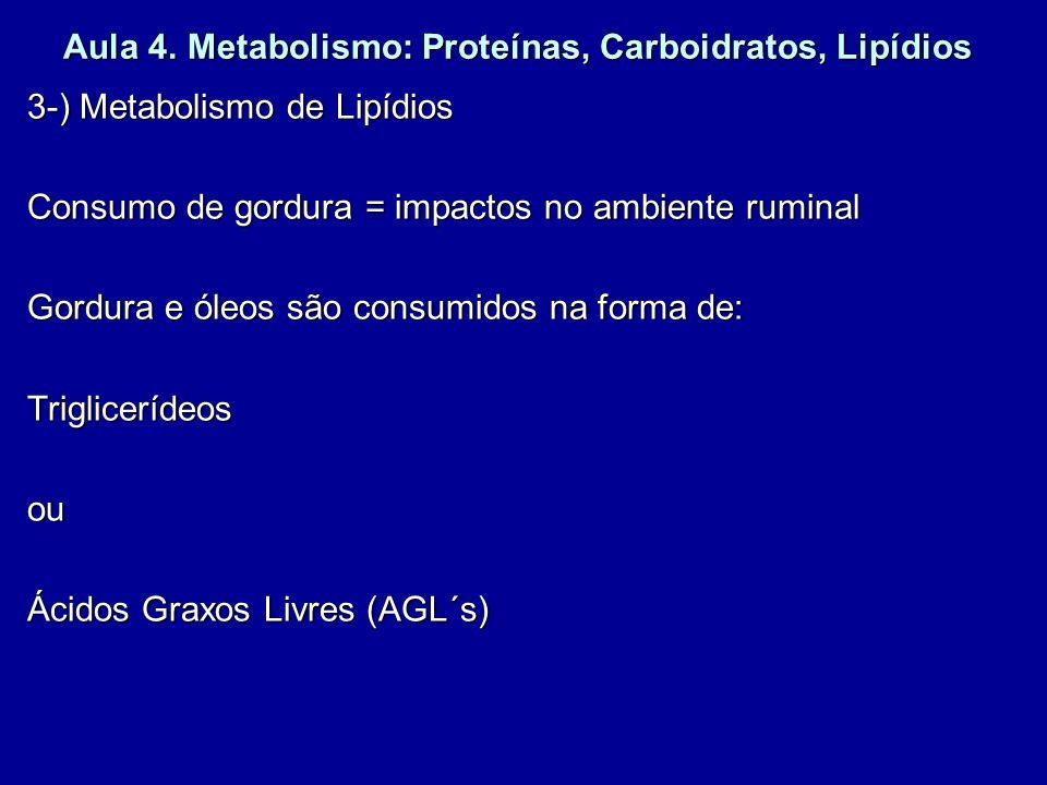 Aula 4. Metabolismo: Proteínas, Carboidratos, Lipídios 3-) Metabolismo de Lipídios Consumo de gordura = impactos no ambiente ruminal Gordura e óleos s