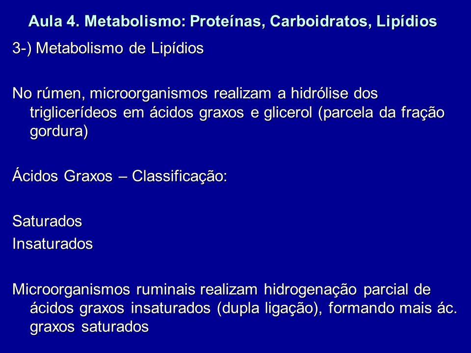 Aula 4. Metabolismo: Proteínas, Carboidratos, Lipídios 3-) Metabolismo de Lipídios No rúmen, microorganismos realizam a hidrólise dos triglicerídeos e