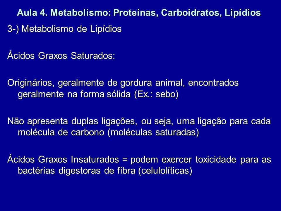 Aula 4. Metabolismo: Proteínas, Carboidratos, Lipídios 3-) Metabolismo de Lipídios Ácidos Graxos Saturados: Originários, geralmente de gordura animal,