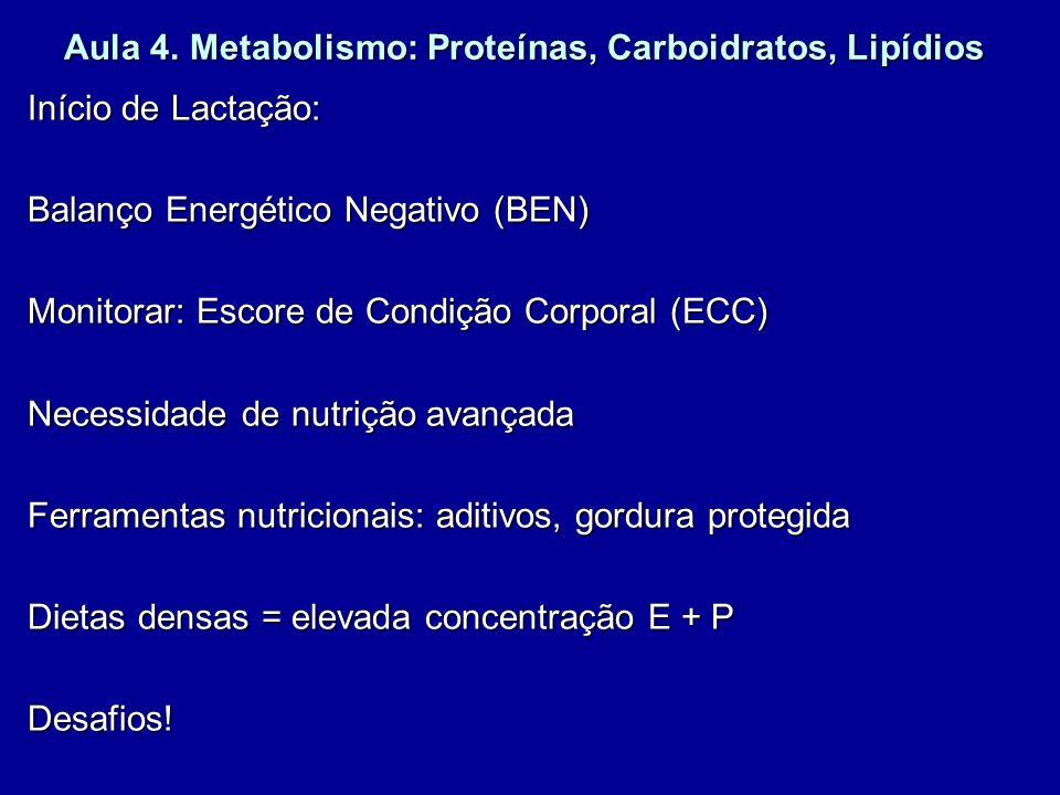 Início de Lactação: Balanço Energético Negativo (BEN) Monitorar: Escore de Condição Corporal (ECC) Necessidade de nutrição avançada Ferramentas nutric
