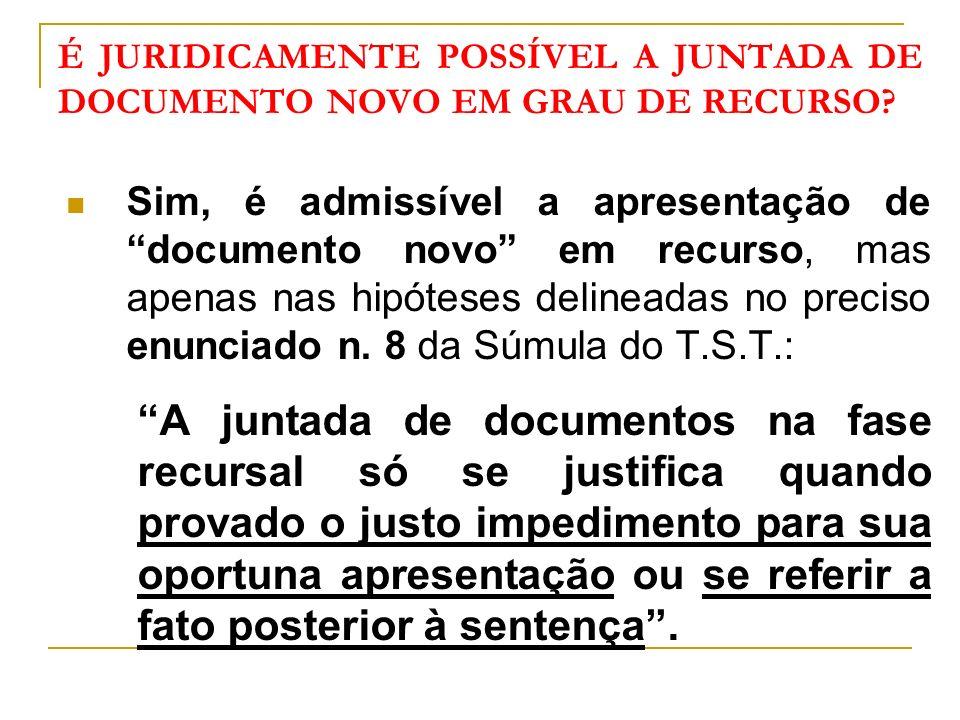 É JURIDICAMENTE POSSÍVEL A JUNTADA DE DOCUMENTO NOVO EM GRAU DE RECURSO.