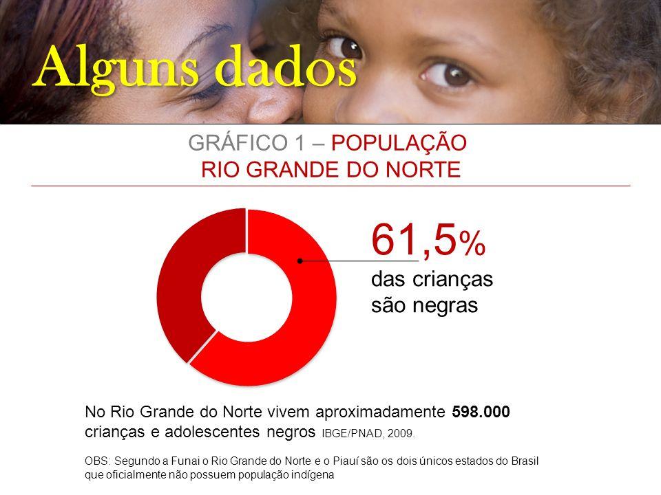 Alguns dados 61,5 % das crianças são negras No Rio Grande do Norte vivem aproximadamente 598.000 crianças e adolescentes negros IBGE/PNAD, 2009. OBS: