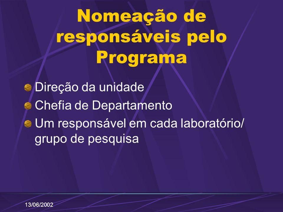 13/06/2002 Nomeação de responsáveis pelo Programa Direção da unidade Chefia de Departamento Um responsável em cada laboratório/ grupo de pesquisa