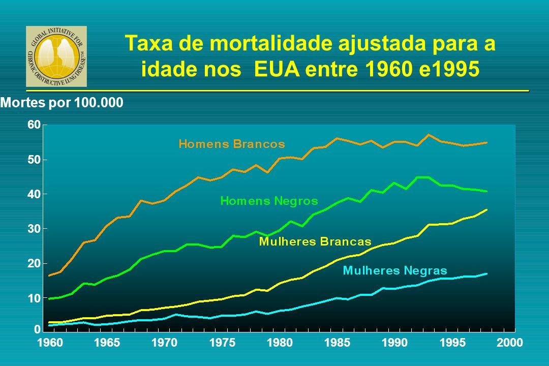 60 Mortes por 100.000 196019651970200019751980198519901995 50 40 30 20 10 0 Taxa de mortalidade ajustada para a idade nos EUA entre 1960 e1995