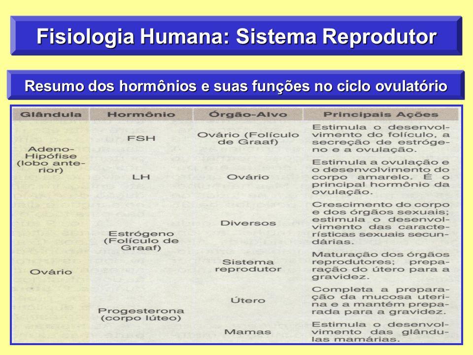 Fisiologia Humana: Sistema Reprodutor Resumo dos hormônios e suas funções no ciclo ovulatório