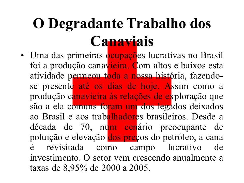 O Degradante Trabalho dos Canaviais Uma das primeiras ocupações lucrativas no Brasil foi a produção canavieira.