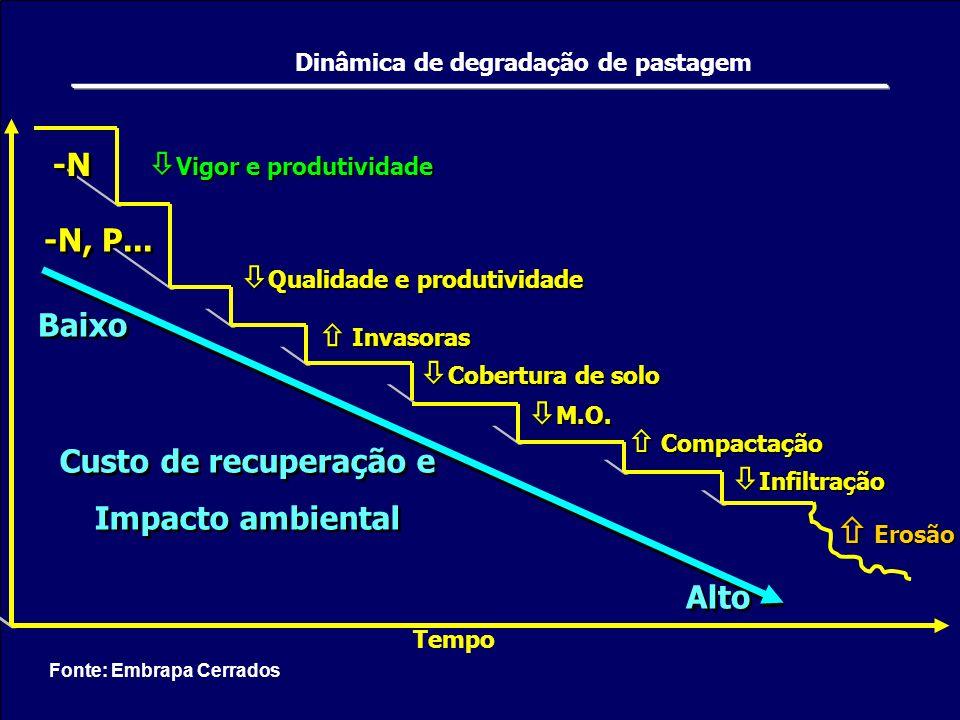 -N -N, P... Qualidade e produtividade Vigor e produtividade Invasoras Cobertura de solo M.O. Compactação Infiltração Erosão Custo de recuperação e Imp