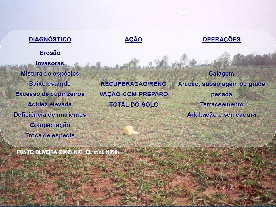 DIAGNÓSTICOAÇÃOOPERAÇÕESErosãoInvasoras Mistura de espécies Baixo estande Excesso de cupinzeiros Acidez elevada Deficiência de nutrientes Compactação