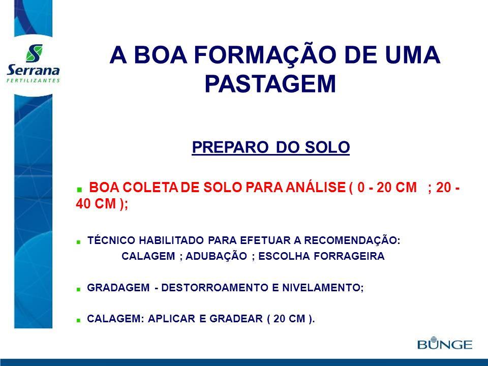 A BOA FORMAÇÃO DE UMA PASTAGEM PREPARO DO SOLO BOA COLETA DE SOLO PARA ANÁLISE ( 0 - 20 CM ; 20 - 40 CM ); TÉCNICO HABILITADO PARA EFETUAR A RECOMENDA
