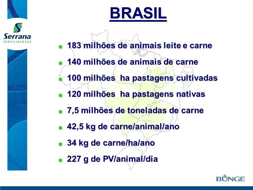BRASIL 183 milhões de animais leite e carne 183 milhões de animais leite e carne 140 milhões de animais de carne 140 milhões de animais de carne 100 m