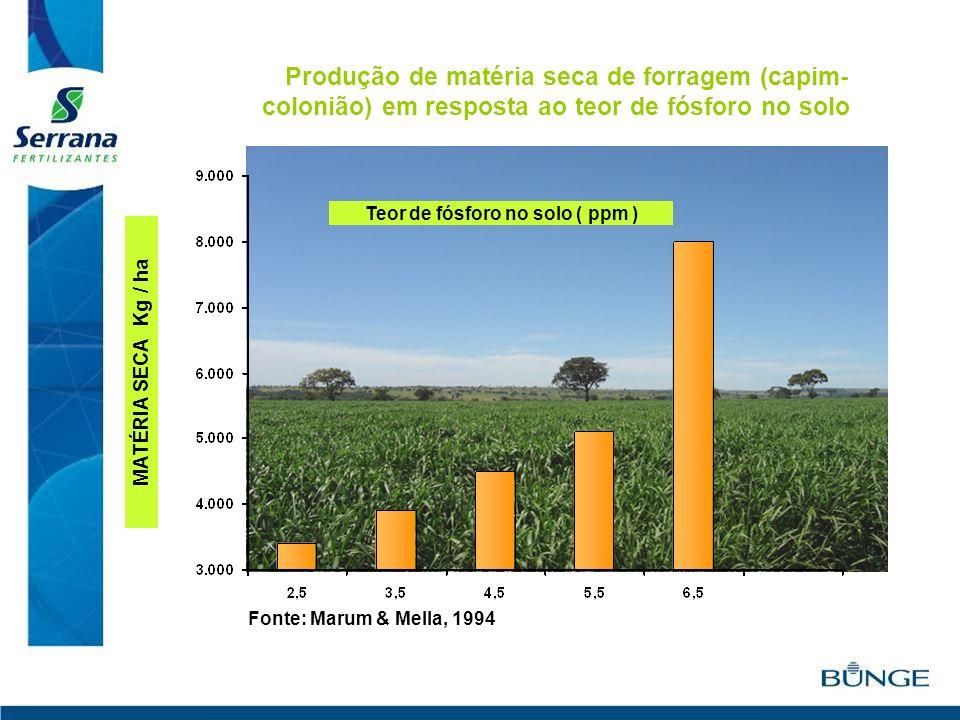 MATÉRIA SECA Kg / ha Fonte: Marum & Mella, 1994 Produção de matéria seca de forragem (capim- colonião) em resposta ao teor de fósforo no solo Teor de