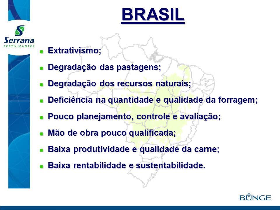 BRASIL Extrativismo; Extrativismo; Degradação das pastagens; Degradação das pastagens; Degradação dos recursos naturais; Degradação dos recursos natur