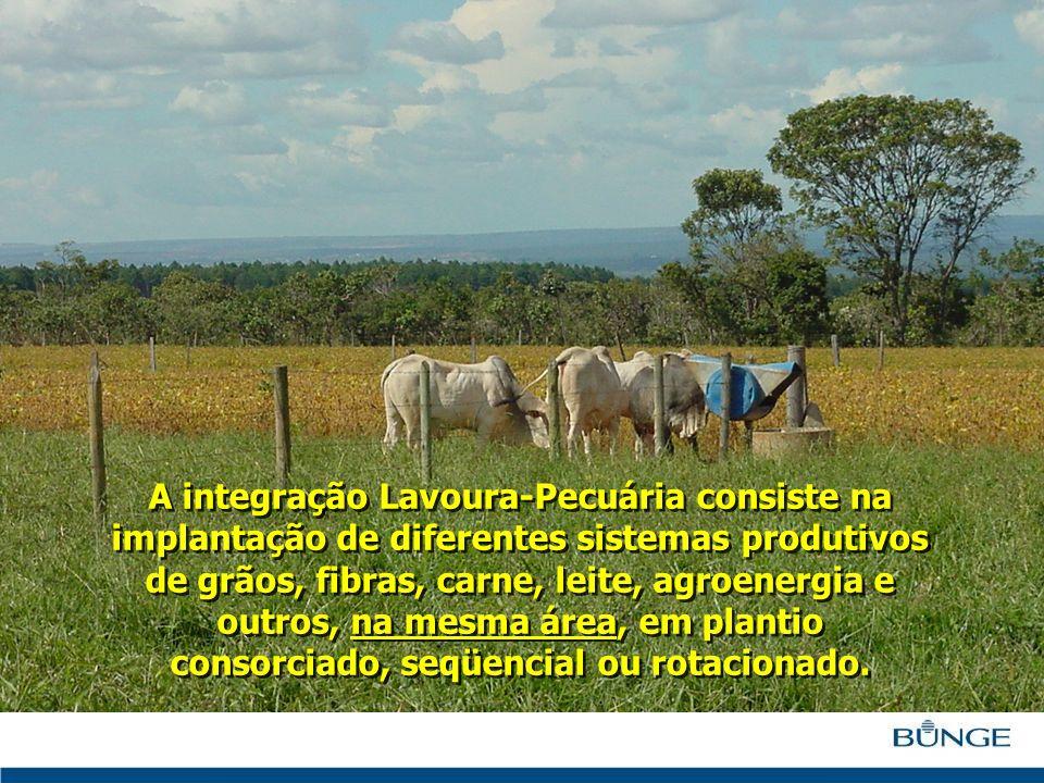 A integração Lavoura-Pecuária consiste na implantação de diferentes sistemas produtivos de grãos, fibras, carne, leite, agroenergia e outros, na mesma