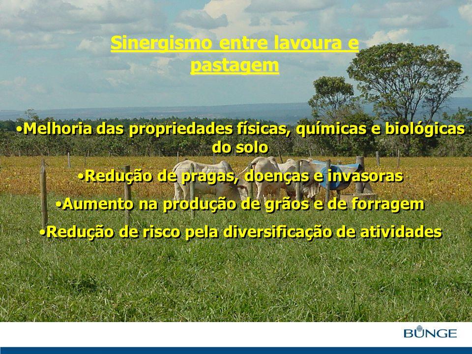Melhoria das propriedades físicas, químicas e biológicas do solo Redução de pragas, doenças e invasoras Aumento na produção de grãos e de forragem Red