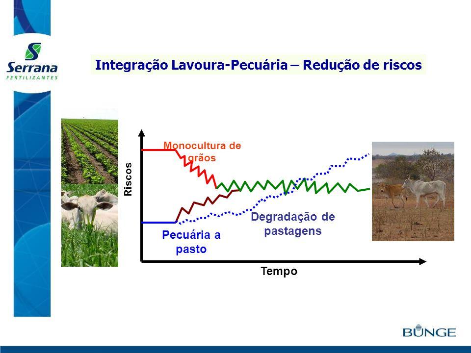 Pecuária a pasto Monocultura de grãos Riscos Tempo ILP Degradação de pastagens Integração Lavoura-Pecuária – Redução de riscos