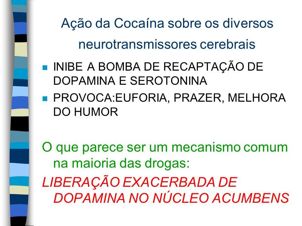 Ação da Cocaína sobre os diversos neurotransmissores cerebrais n INIBE A BOMBA DE RECAPTAÇÃO DE DOPAMINA E SEROTONINA n PROVOCA:EUFORIA, PRAZER, MELHO