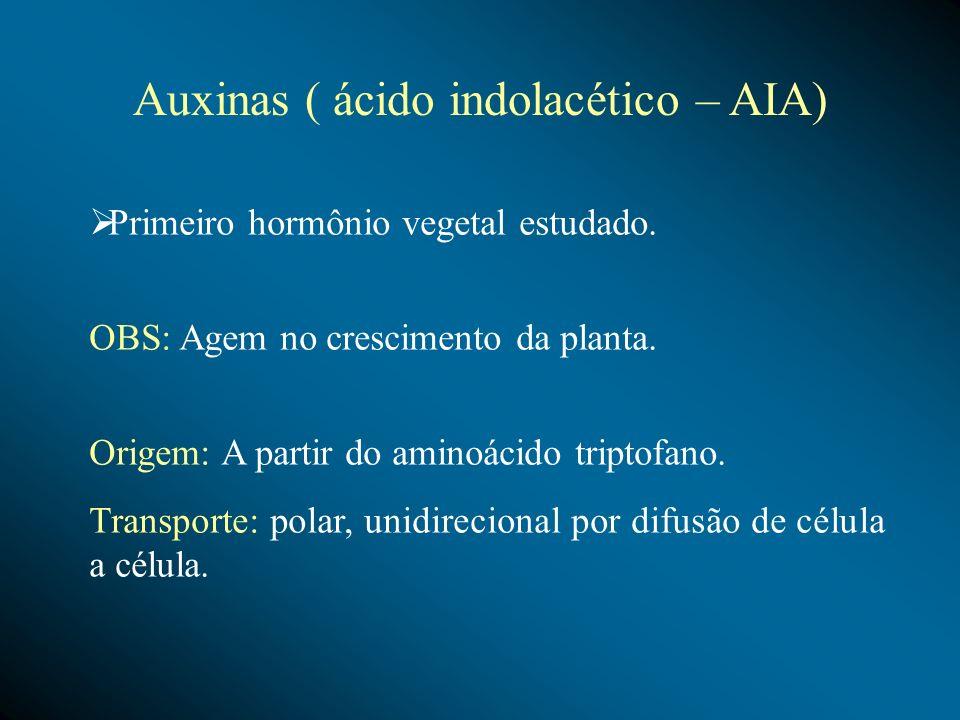 Primeiro hormônio vegetal estudado. OBS: Agem no crescimento da planta. Origem: A partir do aminoácido triptofano. Transporte: polar, unidirecional po