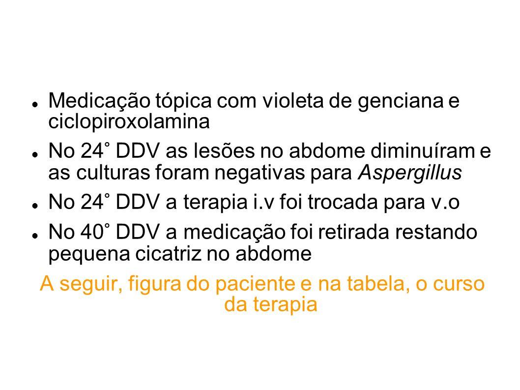 Medicação tópica com violeta de genciana e ciclopiroxolamina No 24° DDV as lesões no abdome diminuíram e as culturas foram negativas para Aspergillus