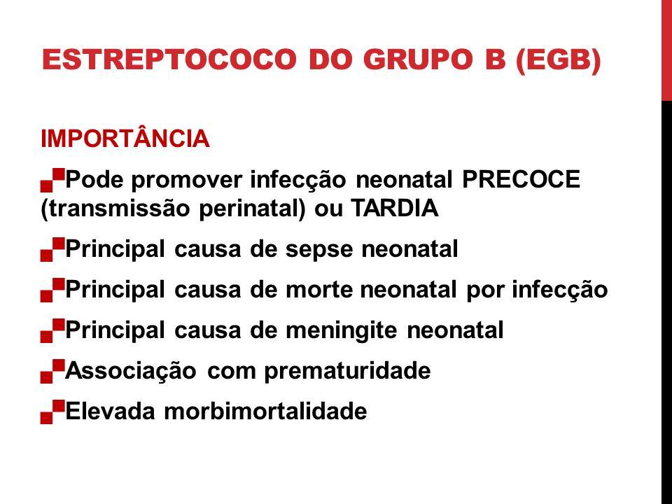 ESTREPTOCOCO DO GRUPO B (EGB) IMPORTÂNCIA Pode promover infecção neonatal PRECOCE (transmissão perinatal) ou TARDIA Principal causa de sepse neonatal Principal causa de morte neonatal por infecção Principal causa de meningite neonatal Associação com prematuridade Elevada morbimortalidade