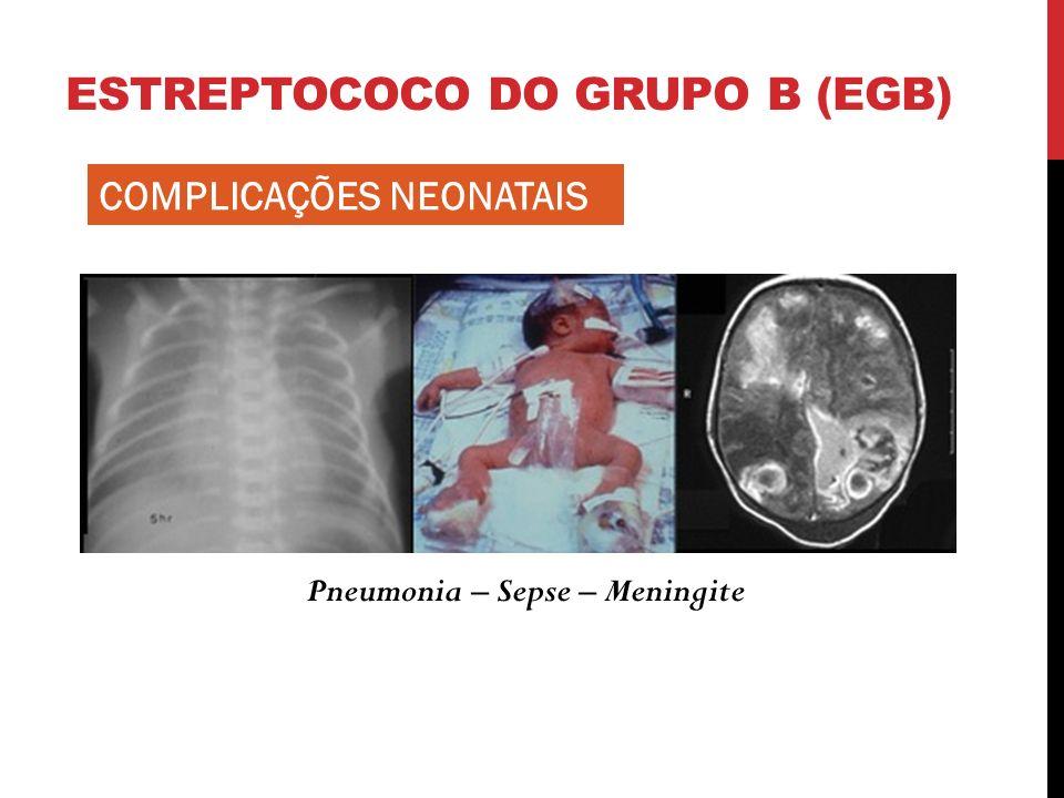 ESTREPTOCOCO DO GRUPO B (EGB) Pneumonia – Sepse – Meningite COMPLICAÇÕES NEONATAIS