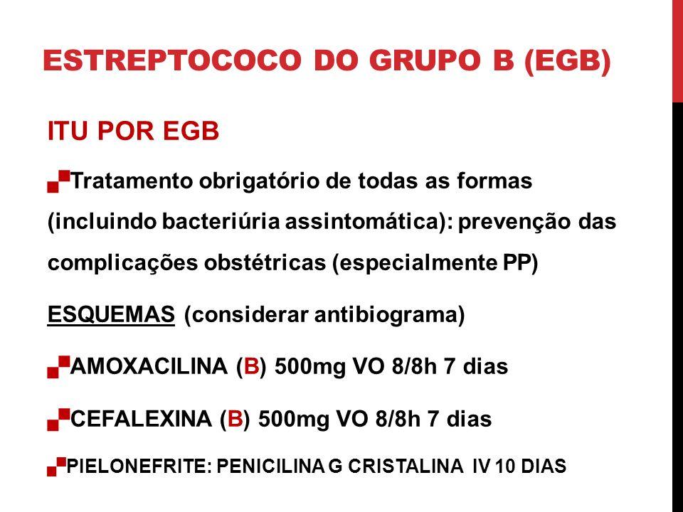 ESTREPTOCOCO DO GRUPO B (EGB) ITU POR EGB Tratamento obrigatório de todas as formas (incluindo bacteriúria assintomática): prevenção das complicações obstétricas (especialmente PP) ESQUEMAS (considerar antibiograma) AMOXACILINA (B) 500mg VO 8/8h 7 dias CEFALEXINA (B) 500mg VO 8/8h 7 dias PIELONEFRITE: PENICILINA G CRISTALINA IV 10 DIAS