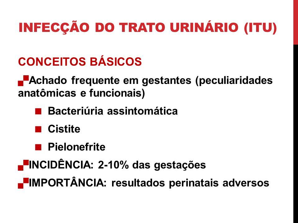 INFECÇÃO DO TRATO URINÁRIO (ITU) CONCEITOS BÁSICOS Achado frequente em gestantes (peculiaridades anatômicas e funcionais) Bacteriúria assintomática Cistite Pielonefrite INCIDÊNCIA: 2-10% das gestações IMPORTÂNCIA: resultados perinatais adversos