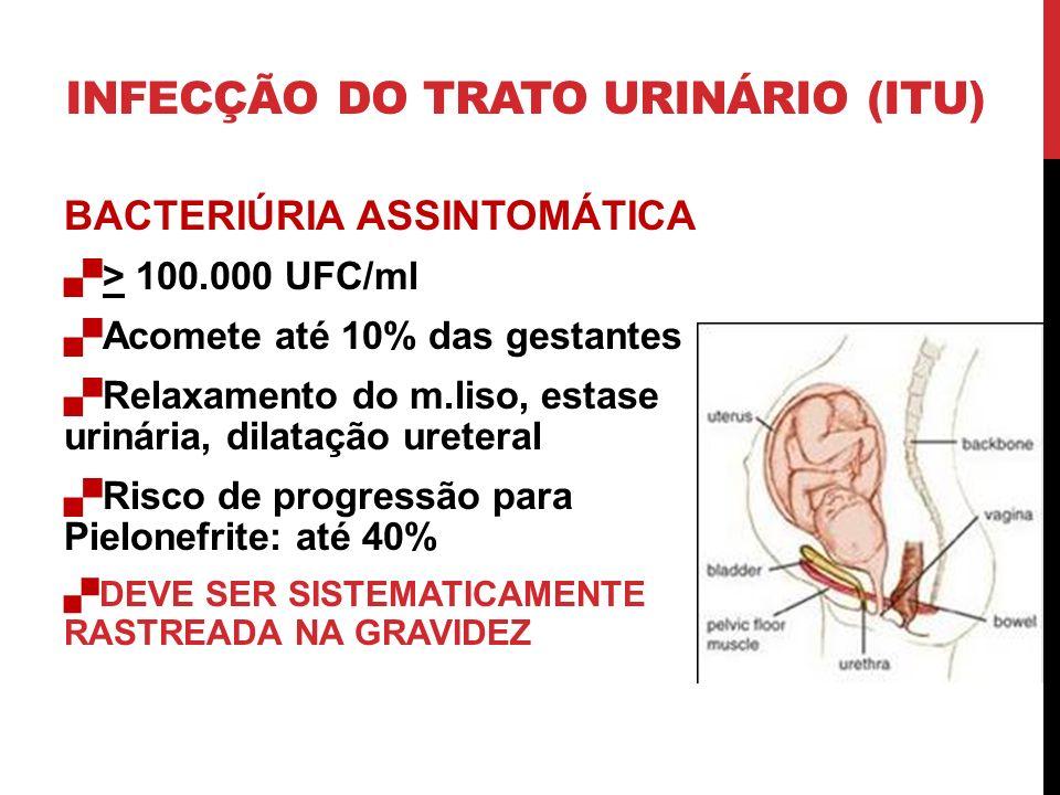 INFECÇÃO DO TRATO URINÁRIO (ITU) BACTERIÚRIA ASSINTOMÁTICA > 100.000 UFC/ml Acomete até 10% das gestantes Relaxamento do m.liso, estase urinária, dila