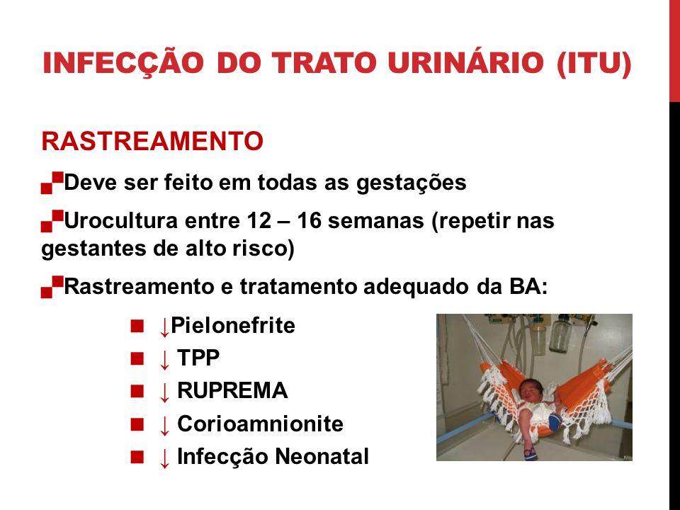 PIELONEFRITE Complicações Anemia (23%) Bacteremia (17%) Insuficiência respiratória (7%) Disfunçáo renal – IRA (2%) Sepse – Choqe séptico – SDRA (20%) INFECÇÃO DO TRATO URINÁRIO (ITU)