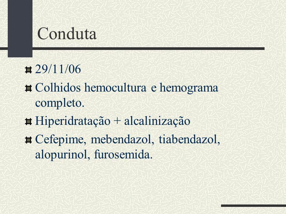 Conduta 29/11/06 Colhidos hemocultura e hemograma completo. Hiperidratação + alcalinização Cefepime, mebendazol, tiabendazol, alopurinol, furosemida.