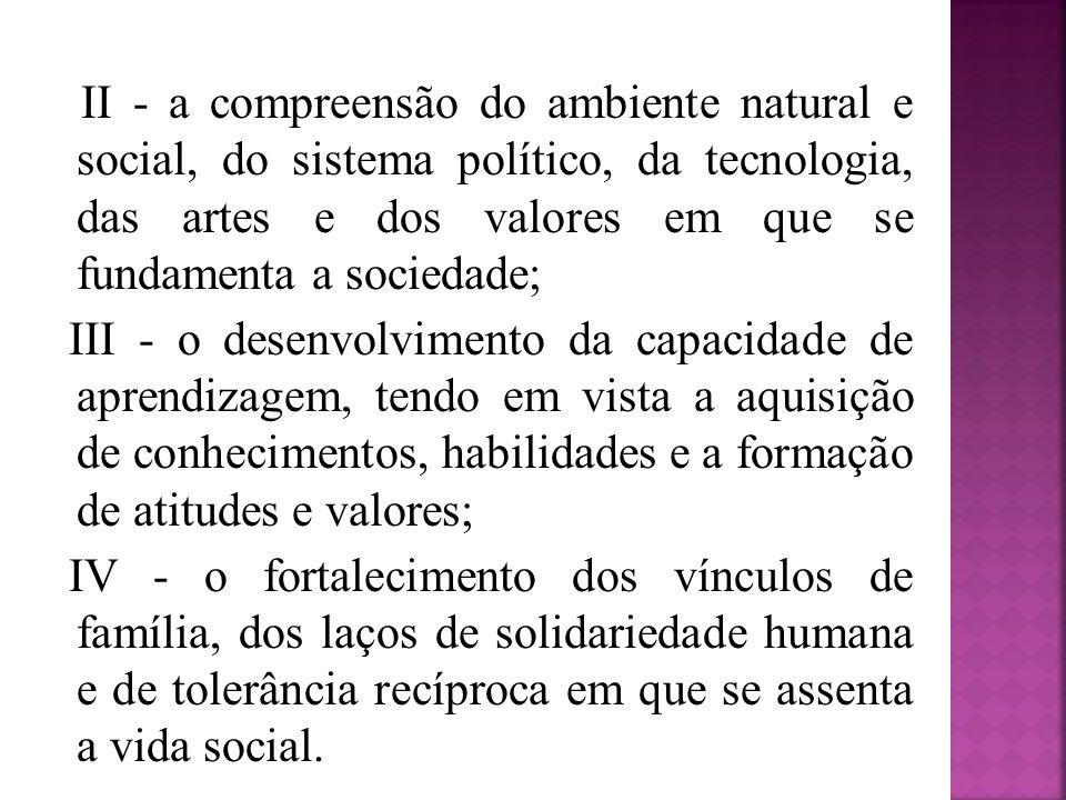 II - a compreensão do ambiente natural e social, do sistema político, da tecnologia, das artes e dos valores em que se fundamenta a sociedade; III - o