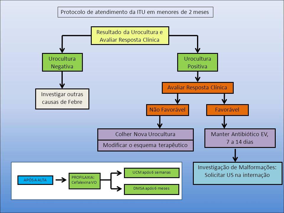 Resultado da Urocultura e Avaliar Resposta Clínica Urocultura Negativa Investigar outras causas de Febre Urocultura Positiva Não Favorável Manter Anti