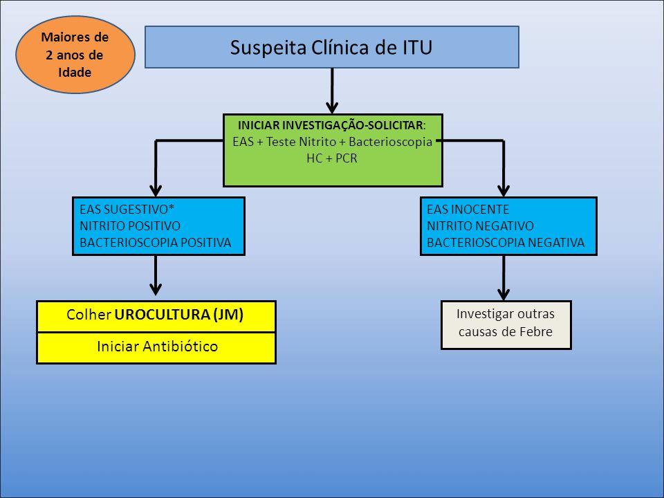 Suspeita Clínica de ITU INICIAR INVESTIGAÇÃO-SOLICITAR: EAS + Teste Nitrito + Bacterioscopia HC + PCR EAS SUGESTIVO* NITRITO POSITIVO BACTERIOSCOPIA P