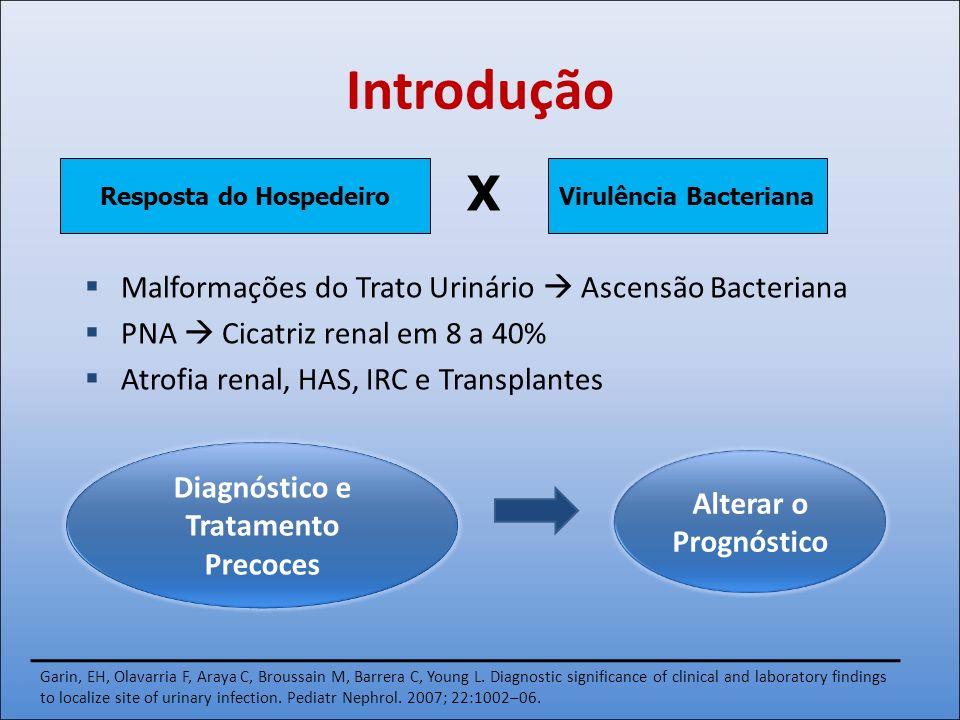 Introdução Malformações do Trato Urinário Ascensão Bacteriana PNA Cicatriz renal em 8 a 40% Atrofia renal, HAS, IRC e Transplantes Virulência Bacteria