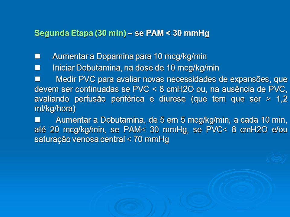 Segunda Etapa (30 min) – se PAM < 30 mmHg Aumentar a Dopamina para 10 mcg/kg/min Aumentar a Dopamina para 10 mcg/kg/min Iniciar Dobutamina, na dose de