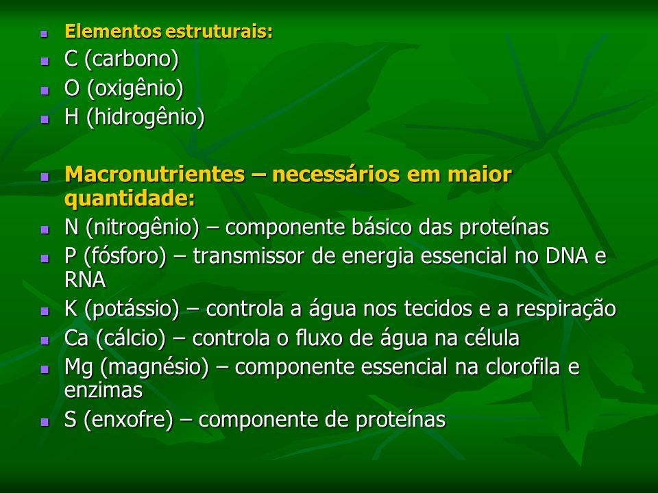 Elementos estruturais: Elementos estruturais: C (carbono) C (carbono) O (oxigênio) O (oxigênio) H (hidrogênio) H (hidrogênio) Macronutrientes – necessários em maior quantidade: Macronutrientes – necessários em maior quantidade: N (nitrogênio) – componente básico das proteínas N (nitrogênio) – componente básico das proteínas P (fósforo) – transmissor de energia essencial no DNA e RNA P (fósforo) – transmissor de energia essencial no DNA e RNA K (potássio) – controla a água nos tecidos e a respiração K (potássio) – controla a água nos tecidos e a respiração Ca (cálcio) – controla o fluxo de água na célula Ca (cálcio) – controla o fluxo de água na célula Mg (magnésio) – componente essencial na clorofila e enzimas Mg (magnésio) – componente essencial na clorofila e enzimas S (enxofre) – componente de proteínas S (enxofre) – componente de proteínas