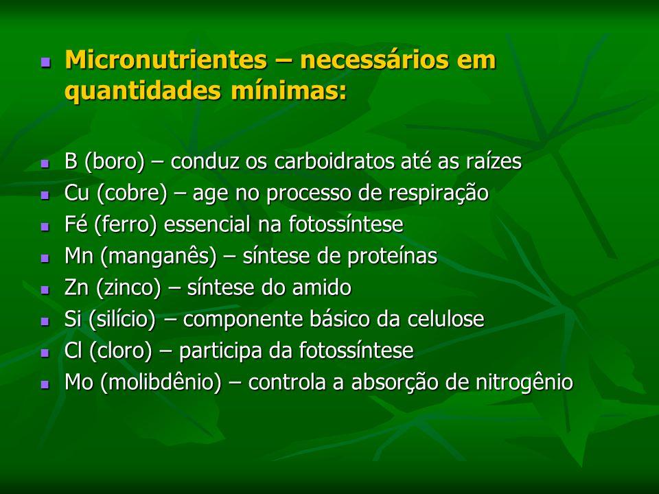 Micronutrientes – necessários em quantidades mínimas: Micronutrientes – necessários em quantidades mínimas: B (boro) – conduz os carboidratos até as raízes B (boro) – conduz os carboidratos até as raízes Cu (cobre) – age no processo de respiração Cu (cobre) – age no processo de respiração Fé (ferro) essencial na fotossíntese Fé (ferro) essencial na fotossíntese Mn (manganês) – síntese de proteínas Mn (manganês) – síntese de proteínas Zn (zinco) – síntese do amido Zn (zinco) – síntese do amido Si (silício) – componente básico da celulose Si (silício) – componente básico da celulose Cl (cloro) – participa da fotossíntese Cl (cloro) – participa da fotossíntese Mo (molibdênio) – controla a absorção de nitrogênio Mo (molibdênio) – controla a absorção de nitrogênio