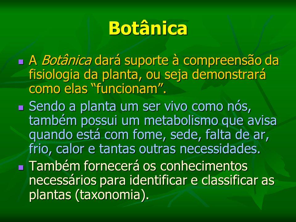 Botânica A Botânica dará suporte à compreensão da fisiologia da planta, ou seja demonstrará como elas funcionam.
