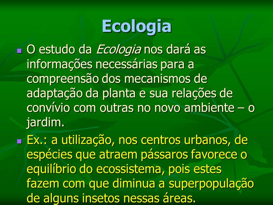 Fitogeografia A Fitogeografia nos trará informações necessárias para a compreensão do habitat das plantas, fornecendo-nos os subsídios necessários para a correta utilização das espécies escolhidas.