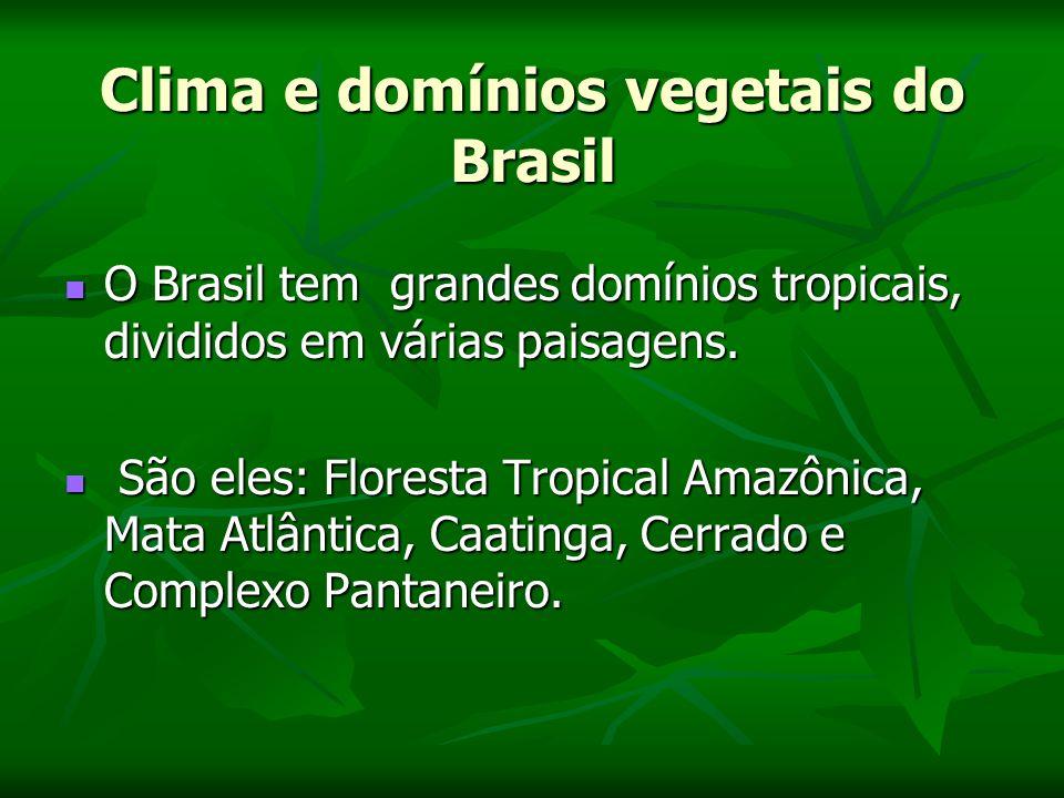 Clima e domínios vegetais do Brasil O Brasil tem grandes domínios tropicais, divididos em várias paisagens.