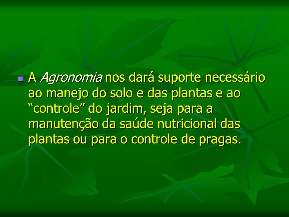 Pantanal Possível identificar uma série de coberturas vegetais, a região pode ser compreendida como sendo uma área de transição entre diferentes tipos de ecossistemas apresentados no território brasileiro.
