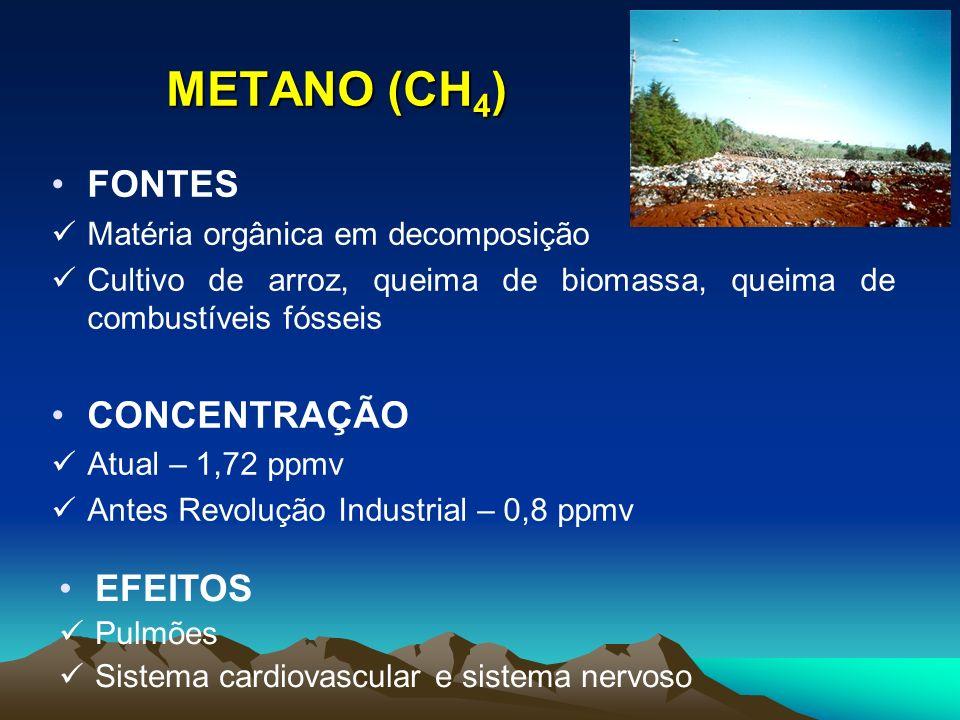 METANO (CH 4 ) FONTES Matéria orgânica em decomposição Cultivo de arroz, queima de biomassa, queima de combustíveis fósseis CONCENTRAÇÃO Atual – 1,72