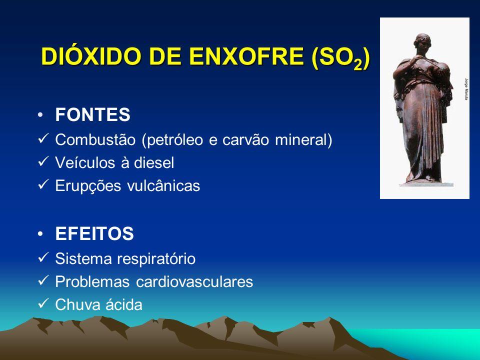 DIÓXIDO DE ENXOFRE (SO 2 ) FONTES Combustão (petróleo e carvão mineral) Veículos à diesel Erupções vulcânicas EFEITOS Sistema respiratório Problemas c