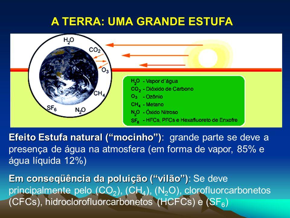 Efeito Estufa natural (mocinho) Efeito Estufa natural (mocinho): grande parte se deve a presença de água na atmosfera (em forma de vapor, 85% e água l