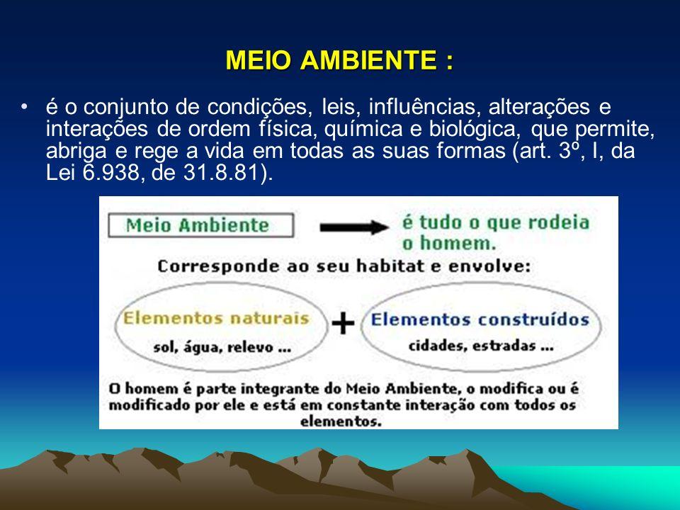 OS EFEITOS DA DIMINUIÇÃO DA CAMADA DE OZÔNIO ATINGEM O HEMISFÉRIO SUL: O Ministério da Saúde do Chile informou que desde o aparecimento do buraco na camada de ozônio sobre o pólo Sul, os casos de câncer de pele no Chile cresceram 133%; atualmente o governo faz campanhas para a população utilizar cremes protetores para a pele e não ficar exposta ao sol durante as horas mais críticas do dia.