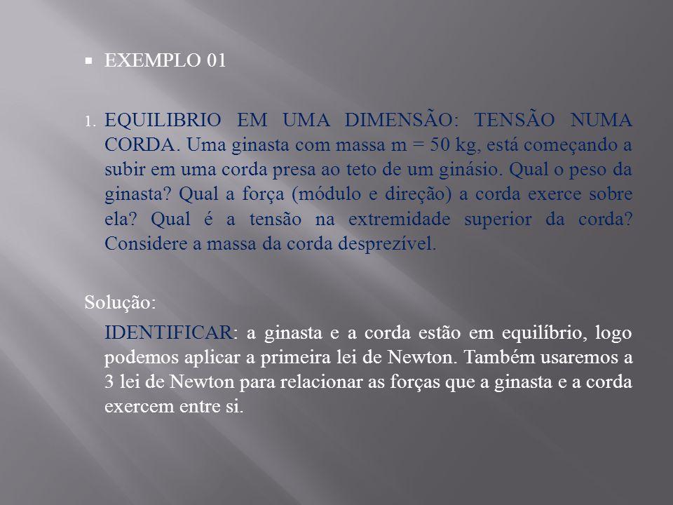 EXEMPLO 01 1.EQUILIBRIO EM UMA DIMENSÃO: TENSÃO NUMA CORDA.