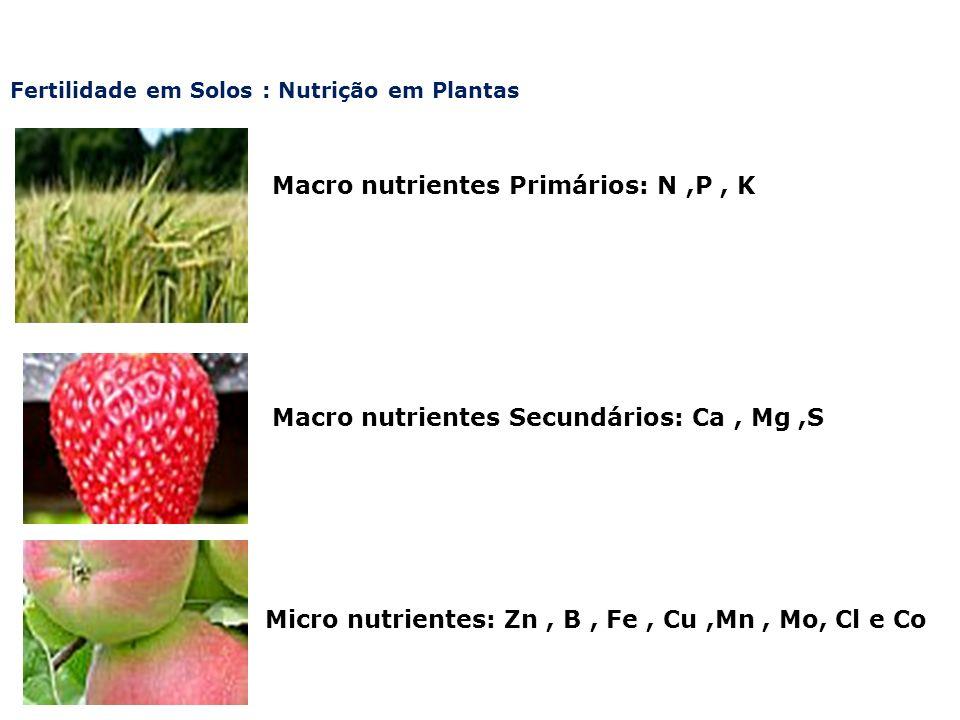 Fertilidade em Solos : Nutrição em Plantas Macro nutrientes Primários: N,P, K Macro nutrientes Secundários: Ca, Mg,S Micro nutrientes: Zn, B, Fe, Cu,M