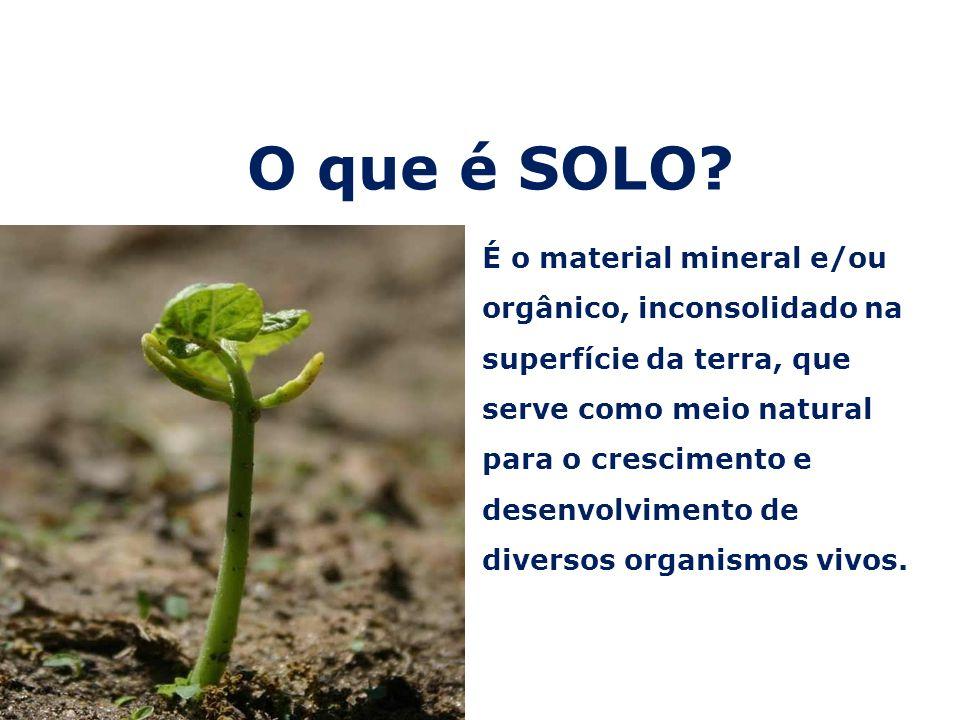O que é SOLO? É o material mineral e/ou orgânico, inconsolidado na superfície da terra, que serve como meio natural para o crescimento e desenvolvimen