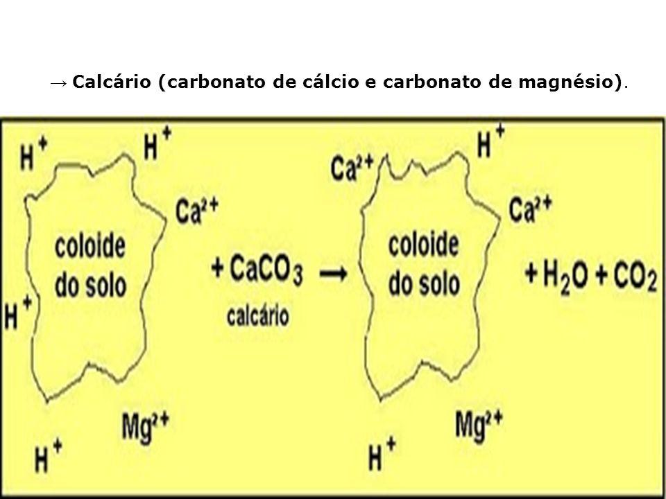 Calcário (carbonato de cálcio e carbonato de magnésio).