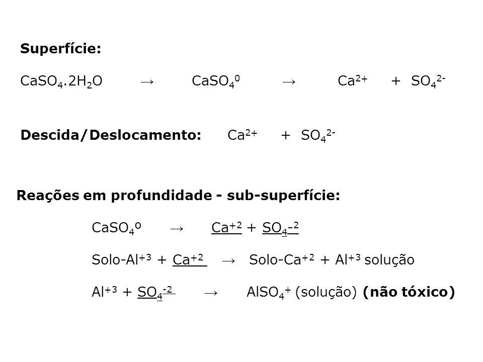 Superfície: CaSO 4.2H 2 O CaSO 4 0 Ca 2+ + SO 4 2- Descida/Deslocamento:Ca 2+ + SO 4 2- Reações em profundidade - sub-superfície: CaSO 4 º Ca +2 + SO